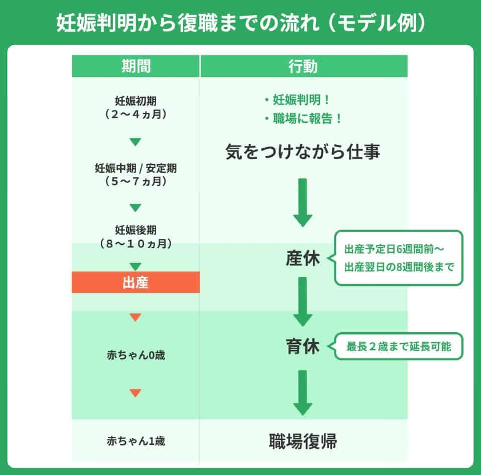 妊娠判明から復職までの流れ(モデル例)妊娠初期(2~4ヶ月):職場に報告。妊娠中期/安定期(5~7ヶ月):気をつけながら仕事。妊娠後期(8~10ヶ月):産休(出産予定日6週間前から出産翌日の8週間後まで)赤ちゃん0歳:育休。最長2歳まで延長可能。職場復帰