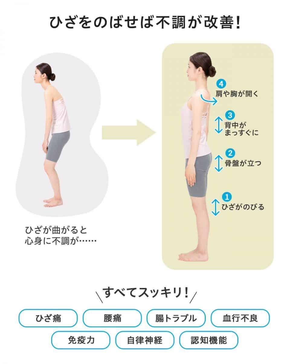 【ひざを伸ばせば不調が改善!】ひざが曲がると心身に不調が・・・。1)ひざがのびる→2)骨盤が立つ→3)背中がまっすぐに→4)肩や胸が開く。ひざを伸ばせば、ひざ痛、腰痛、腸トラブル、血行不良、免疫力、自律神経、認知機能、全てがスッキリします。