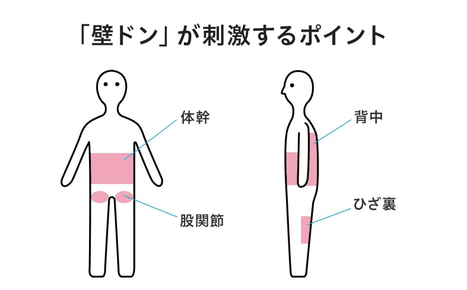 【「壁ドン」が刺激するポイント】体感・股関節・背中・ひざ裏