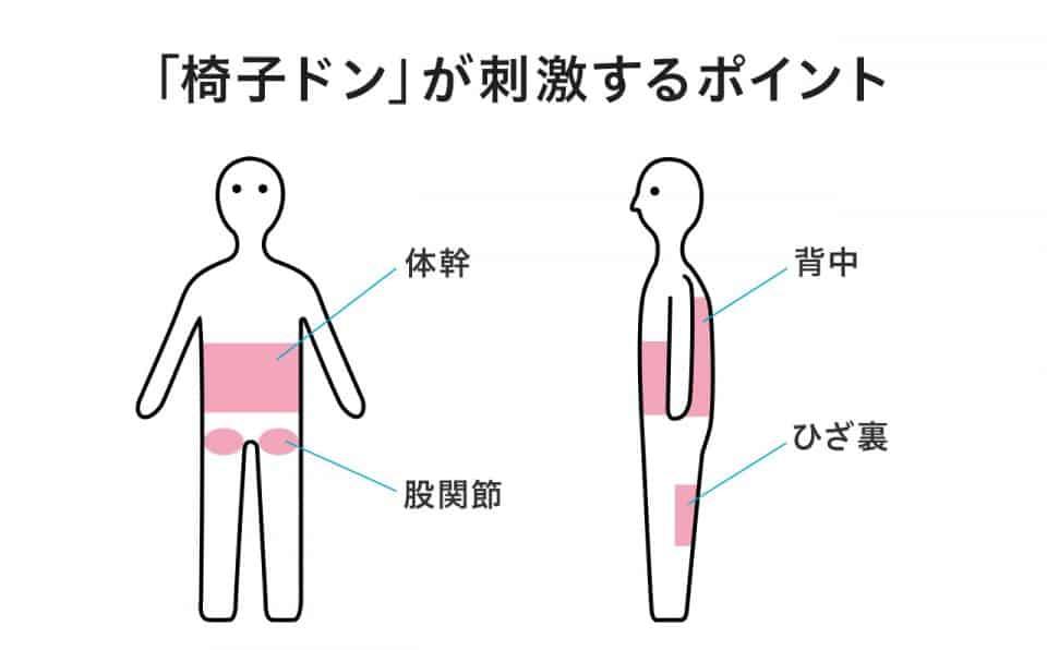 【椅子ドンが刺激するポイント】体感・股関節・背中・ひざ裏